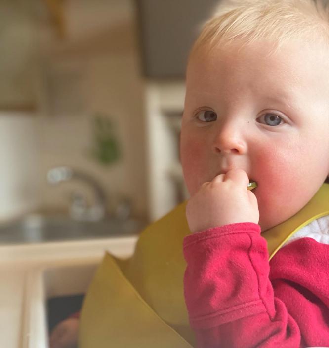insta- baby lunch