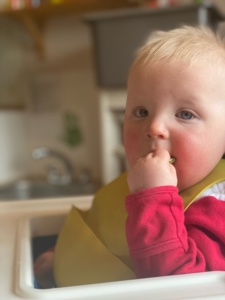 Baby eating cucumber ( tiddlywinks)