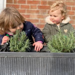 Two girls planting lavender
